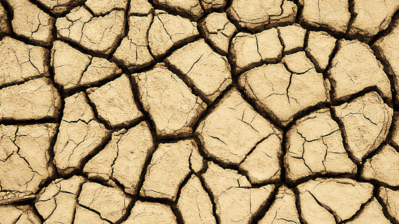 1280-dry-land-farming